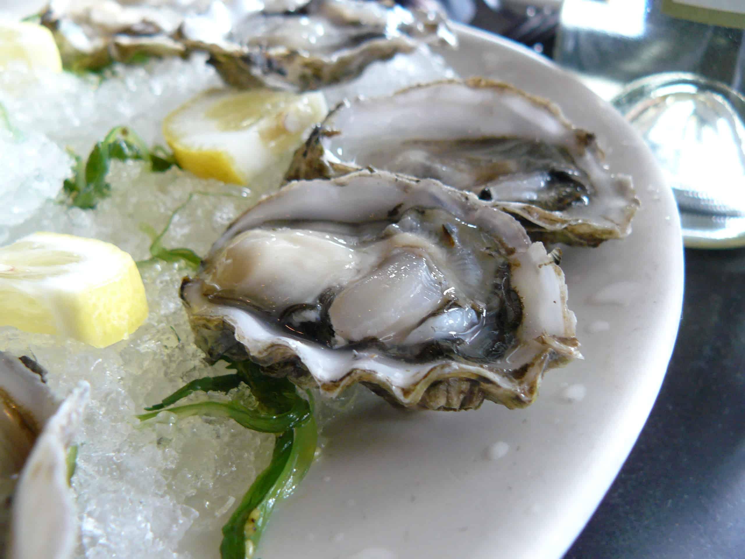 oyster20at20ettas
