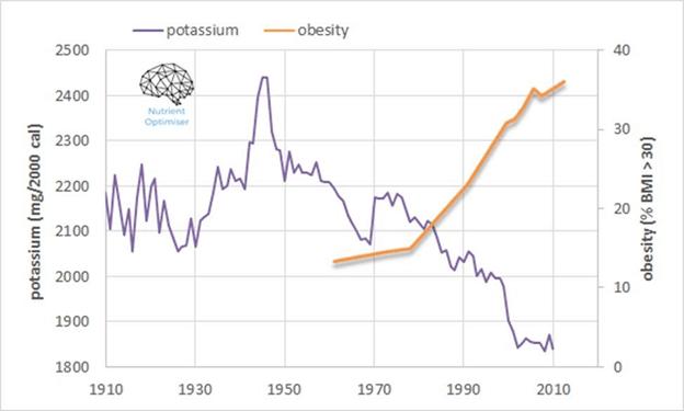 potassium vs obesity