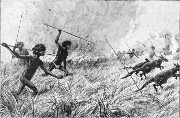 spears to chase prey