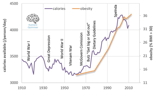 calories vs obesity