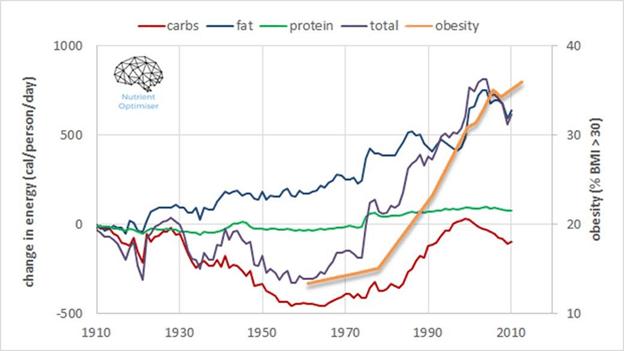 energy intake vs obesity